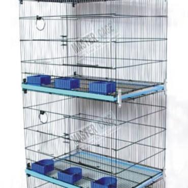 Sarib & Master Cages